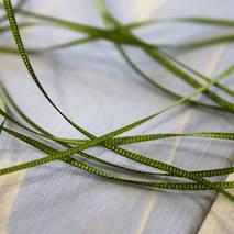 Лента для вышивки, 1 мм - Ленты, ткани