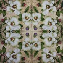 """Салфетка 33*33 см """"Белые цветы"""" - Флора и фауна"""