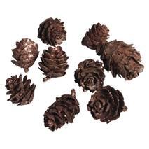Декоративные изделия - шишки, 2-4 см, 50 гр - Декоративные элементы